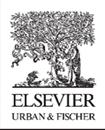 Bild für Kategorie Elsevier (Urban und Fischer)